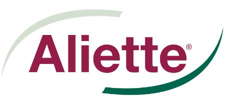aliette_1